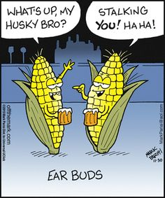 Puns for days! Thanksgiving Puns, English Teacher Humor, Corny Puns, Food Puns, Office Humor, Science Humor, Good Notes, Funny Cartoons, Haha