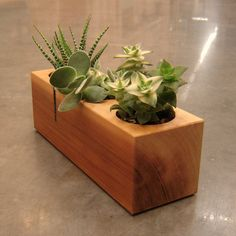 Wood Succulent Planter in Recycled Cedar by andrewsreclaimed, $31.00
