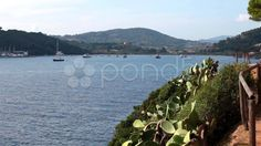 Nice View Of The Sea, Porto Azzurro, Elba Island - Stock Footage | by eZeePicsStudio