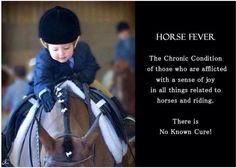 All you horse lovers (From a Facebook post)