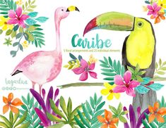 https://www.etsy.com/mx/listing/608012087/hojas-tropicales-tucan-y-flamingo #summer #vacactions #Caribbean #PlayaDelCarmen #trip #beachtime #mexico #birds #PoolParty