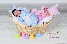 easter basket with newborn babies