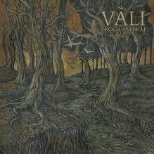 Vàli - Enchanting acoustic music. Like a journey through autumnal Norwegian woods.