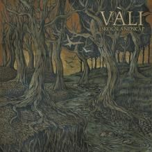 Vàli - Enchanting acoustic music. Like a journey through autumnal Norwegian woods.