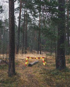 Finnish problems VI: it felt just let it be. . . . . . . #sonyimages #sonya7ii  #featureshotz #igerscz #helsinki #suomi #finland #sonyjako #seurasaari #finnish #preservingnature #samyangaf50mmf14 #subjectivelyobjective #broadmag #banalography #somewheremagazine