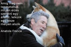 Akita Hachiko and Richard Gere True story of a dogs devotion. How you loved your Akitas.and, how they loved you, never leaving your bed xxx and your Bear and Lilly, too. Hachi A Dogs Tale, I Love Dogs, Puppy Love, Fitness Factory, A Dog's Tale, Ugly Cry, Akita Dog, Akita Puppies, Dia Del Amigo