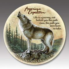 Gray Wolf Stone Coaster Set For $19.99