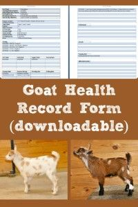Goat Health Record Form