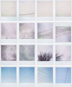 Polaroids By Erin Curry