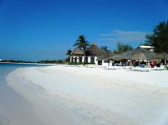 Akumal Beach Resort: where we hung out