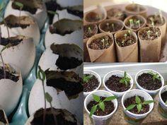 7 Contenitori fai da te per la semina in casa