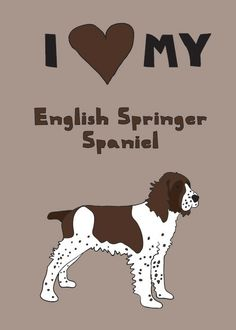 English Springer Spaniel Awww this reminds me of my pups! All Dogs, I Love Dogs, Puppy Love, Best Dogs, Dogs And Puppies, Doggies, English Springer Spaniel, Dog Names, Dog Art