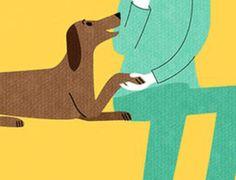 30 Pozitif İpucu İle Köpeğinizi Eğitin http://www.ajanimo.com/30-pozitif-ipucu-ile-kopeginizi-egitin/