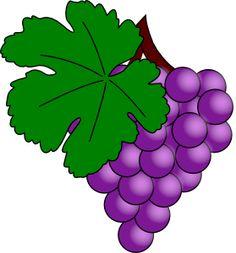 growing wine grapes in texas Free Vector Graphics, Vector Art, Grape Trellis, Grape Arbor, Vine Leaves, Kpop Drawings, Grape Vines, Graphic Art, Clip Art