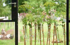 Zomerbloemen in kleine vaasjes met saponaria, vrouwenmantel, akkerscherm en gloriosa - trend planten in reageerbuisjes. Meer voorbeelden lees je in ons lijstje 10x creatief met zomerbloemen