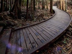 Image Detail for - Wooden walkway Wood Pathway, Wooden Path, Wooden Walkways, Brick Walkway, Outdoor Walkway, Outdoor Landscaping, Outdoor Gardens, Fire Pit Lighting, Outdoor Projects