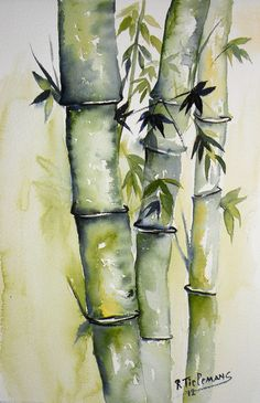 Bamboo, watercolour painting of a plant Watercolor Landscape Paintings, Watercolor Plants, Watercolor Paintings, Watercolours, Beach Watercolor, Floral Watercolor, Bamboo Art, Art Japonais, Tree Art