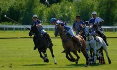 Watch a Polo match at Val de Vie Wine Polo Estate between Paarl and Franschhoek.