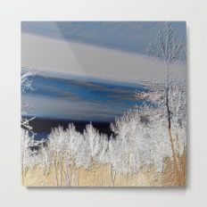 Country Evening Landscape Metal Print