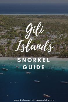 Snorkeling Gili Islands offers you swimming with turtles in crystal clear water. Discover vibrant coral reefs and the Gili Meno underwater statues. Best Snorkeling, Best Scuba Diving, Gili Island, Desert Island, Travel Guides, Travel Tips, Gili Air, Gili Trawangan, Island Tour