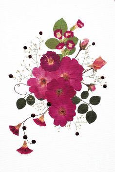 Enchanted Garden Pressed Flower Roses Mixed Media  - Enchanted Garden Pressed Flower Roses Fine Art Print