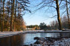 Helder, vriezend weer. 17 januari 2016, foto van Everien van Poppel. #vorst #cold #koud #helder #ijs #ice