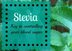 What is Stevia?  Stevia is actually derived from a plant. Stevia has zero calories and is 200 times sweeter than sugar without affecting blood sugar. Since it is sweeter than sugar, a little goes a long way! You also don't want to over do Stevia because there can be too much of a good thing, then it will taste bitter.