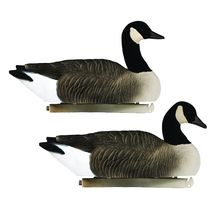 Canada Goose coats replica shop - Goose Decoys on Pinterest | Full Body, Canada Goose and Snow Goose ...