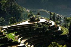 Terrazas de Yunnan, China