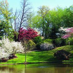 Ideas for Landscaping Yards, Residential Home Landscape Design
