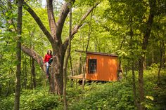 How—and Why—One Woman Lives in 150 Square Feet | What do you do when you're a reluctant city dweller craving nature? If you're ecologist Jenny Carney, you build yourself a tiny remote getaway (with a little help from Pa).