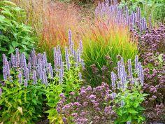 Color Tips : Flower : Garden Galleries : HGTV - Home & Garden Television