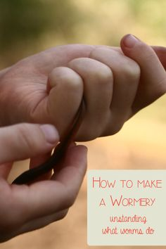 Exploring worms and what they do with kids - make a wormery from junk