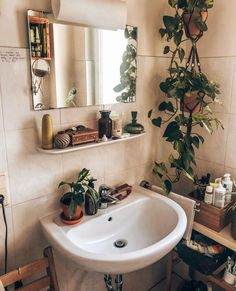 Find unique and fun ways to display your houseplant collection in your home. just like interior designers do! Boho Bathroom, Bathroom Interior, Small Bathroom, Bathroom Ideas, Shiplap Bathroom, Good Bathroom Plants, Bathroom Furniture, Bathrooms With Plants, Teenage Bathroom