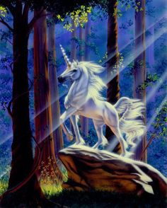 Unicorn Wall Decor Picture Light in The Forest Sue Dawe Fantasy Horse Art Print Poster Unicorn And Fairies, Unicorn Fantasy, Unicorn Horse, Unicorns And Mermaids, Unicorn Art, Unicorn Painting, White Unicorn, Magical Creatures, Fantasy Creatures