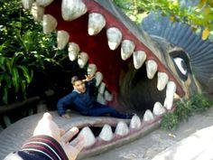 """Nooooooooo. Haha. Playing around.  Taken at """"kebun binatang gembiraloka"""" Jogja #Gembiraloka #Yogyakarta"""