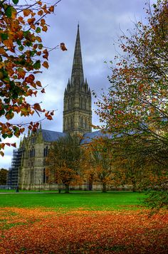 Salisbury Cathedral - home of the Magna Carta