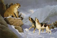 Animals Drawing Double Trouble One of my earliest Cougar and hound hunting paintings. Double Trouble mansanarez wildlife art - Double Trouble One of my earliest Cougar and hound hunting paintings. Wildlife Paintings, Wildlife Art, Animal Paintings, Animal Drawings, Lion Hunting, Hunting Art, Hunting Dogs, Archery Hunting, Hunting Drawings