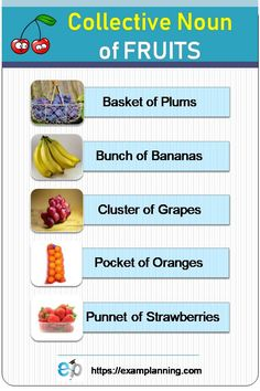 Collective Nouns of Fruits. See the full list of 243 Collective Nouns of people, things and animals. English Words, English Grammar, English Language, Collective Nouns Worksheet, Nouns Kindergarten, Paw Patrol Birthday Cake, Singular And Plural, Perfect English, Soil Layers