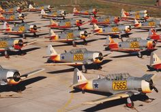 Harvard South African Air Force (SAAF) No. Military Jets, Military Aircraft, South African Air Force, F14 Tomcat, Navy Marine, Model Airplanes, Air Show, War Machine, Fighter Jets