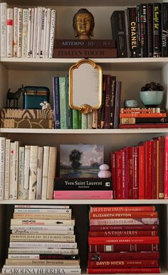 Pretty much exactly what I'm doing in my new bookshelves; Not my usual full rainbow, but clusters of color!