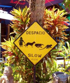 Typical road sign in Guanacaste :D