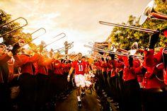 #aaron #murray #georgia #bulldogs #bulldog #nation #pregame #dawgwalk #godawgs #football #dawg #dawgs #athens #ga #sanfordstadium #dawgnation #GATA #sports #gameday #red #black #photography #redcoats #redcoat #band