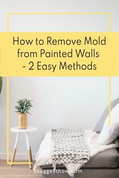 Mold on the painted wall threatens the health of your family living in the home and ruins the appearance of the wall. To restore the beauty of the wall and create a healthy home, knowing how to remove mold from painted walls is essential. Removing the mold can be an easy task if you follow some steps correctly. #DIY #cleaning #homehacks#diytips Household Cleaning Tips, Deep Cleaning Tips, Cleaning Walls, Bathroom Cleaning, Remove Mold, How To Remove, Concrete Block Walls, Tidy Kitchen, Painted Walls