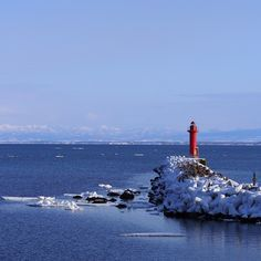鱒浦漁港では流氷はほんの少し。 #流氷 #オホーツク海 #鱒浦 #網走 #オホーツク #北海道 (鱒浦港)
