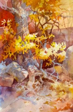 Roots and Branches – Plein Air