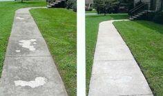 Sidewalks or walkways Like This Power Washing Services, Pressure Washing Services, Cleaning Services, Rose City, Walkways, Lawn Care, Portland Oregon, Or Rose, Sidewalks