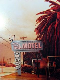 i want to go to america and stay in a pink motel by leann