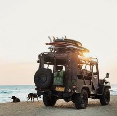 Travel, Cafe Racers and Fashion. Come with me on an adventure. Camping Life, Camping Gear, Camping Kitchen, Van Camping, Camping Hacks, My Dream Car, Dream Cars, Dream Life, Provence