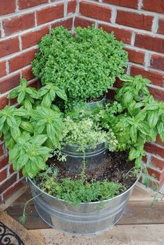 """Small space herb garden. Punch drain holes about 2"""" up from the bottom of each of the containers. Fill each bucket with potting soil, & stack as you go."""